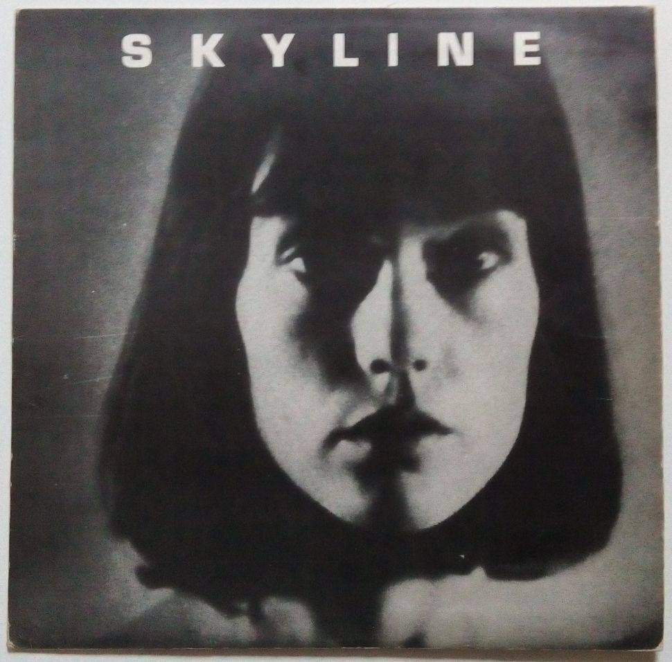Skyline-warhol-cover-1