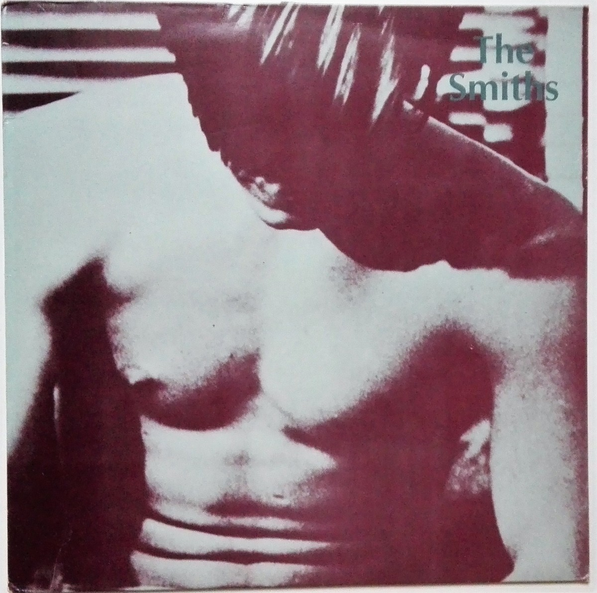 The Smiths The Complete Flesh Picture Andy Earhole