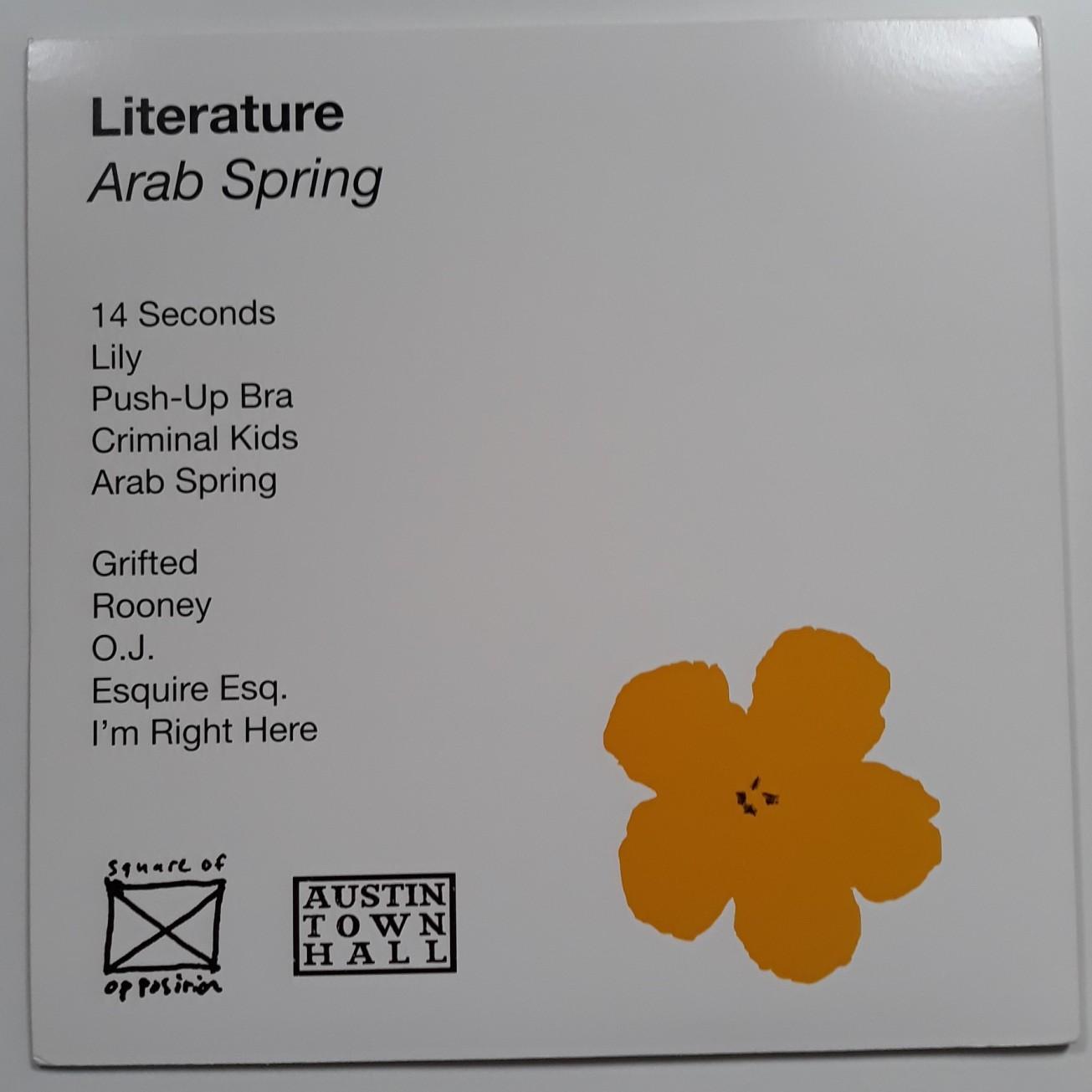 arab-spring-warhol-cover-4