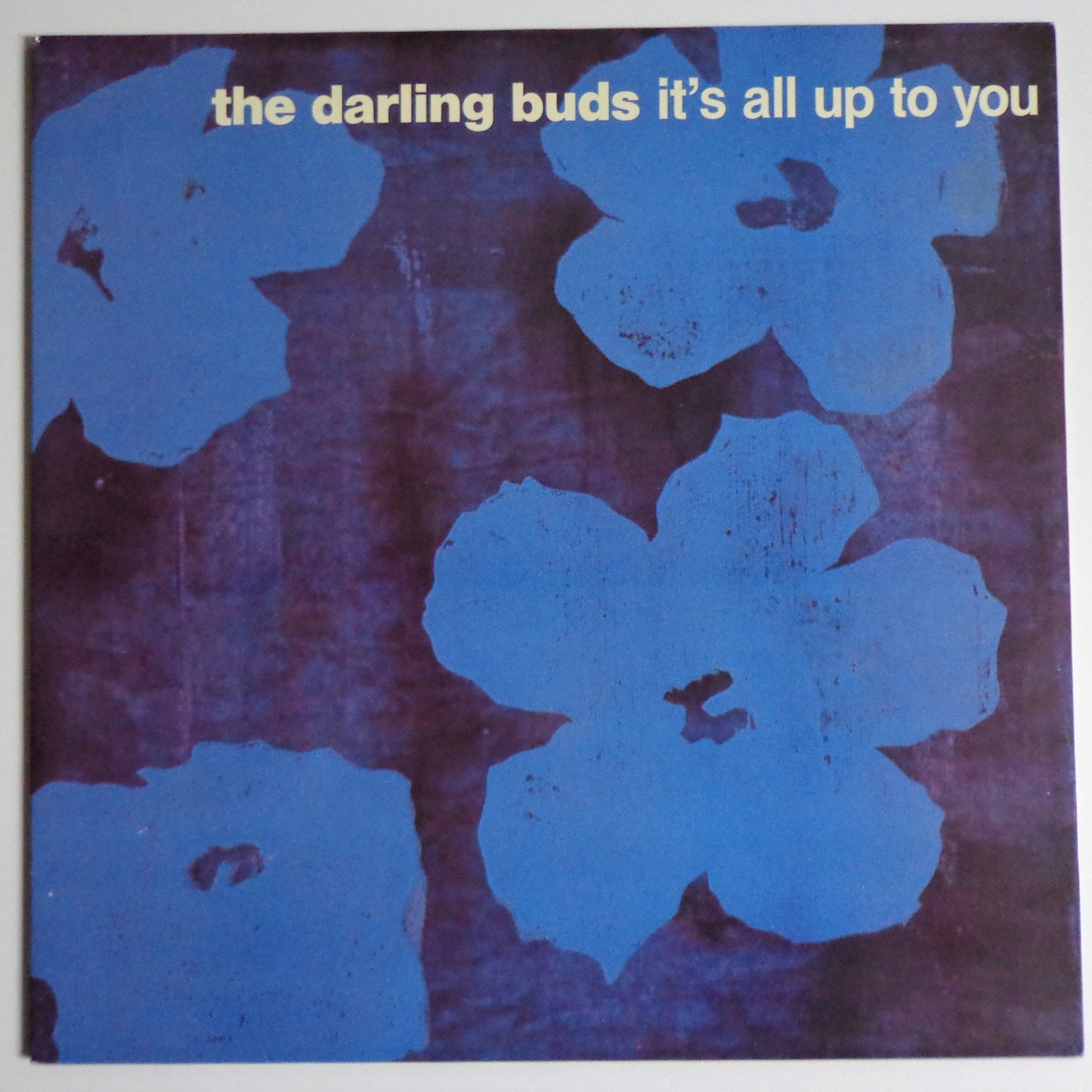 darling-buds-warhol-cover-1